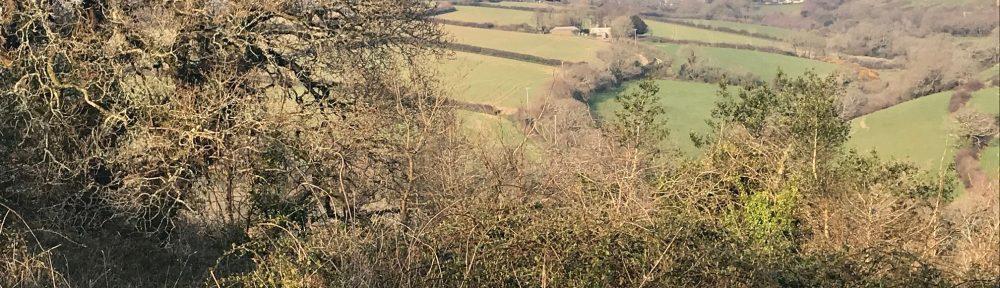 Kenwyn valley, just below the church